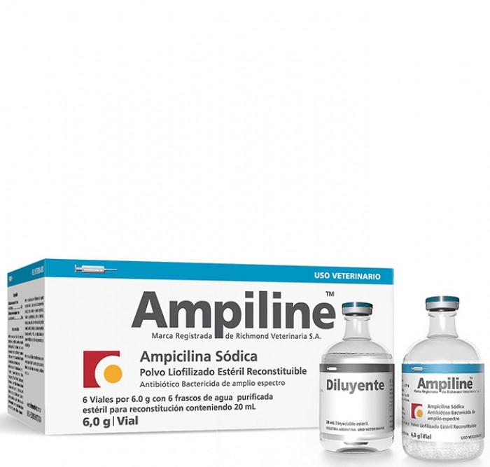 Ampiline Large