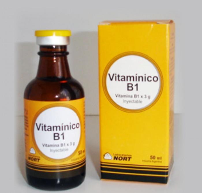 Vitaminico B1 x 3 g.