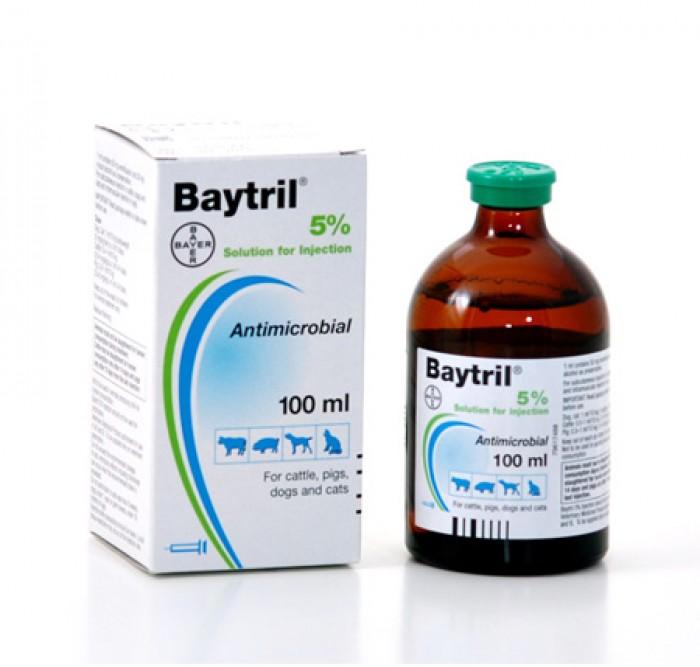 Baytril 5% Iny