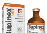 Bupinex Vet