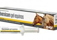 Overxicam Gel Equinos